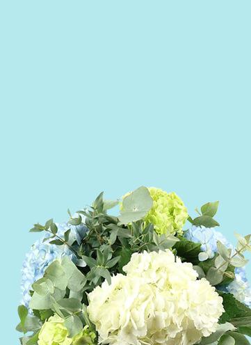 Same day Flowers Uxbridge